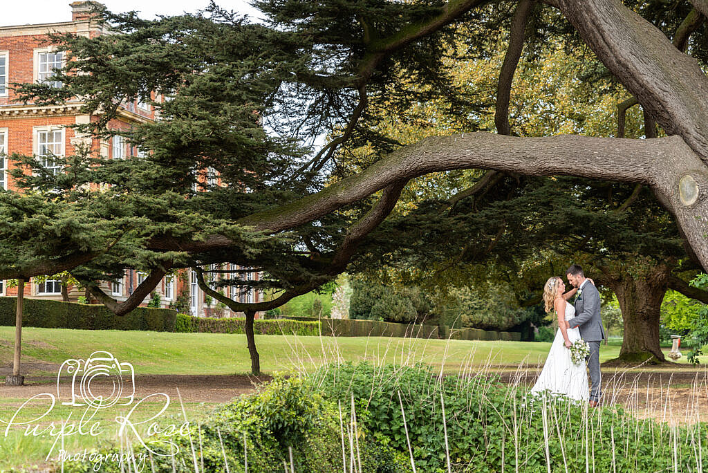 bride and groom under a tree's canopy