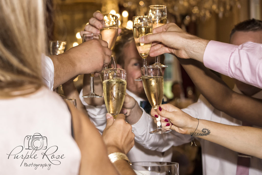 Wedding guest's celebrating with a toast to the couple