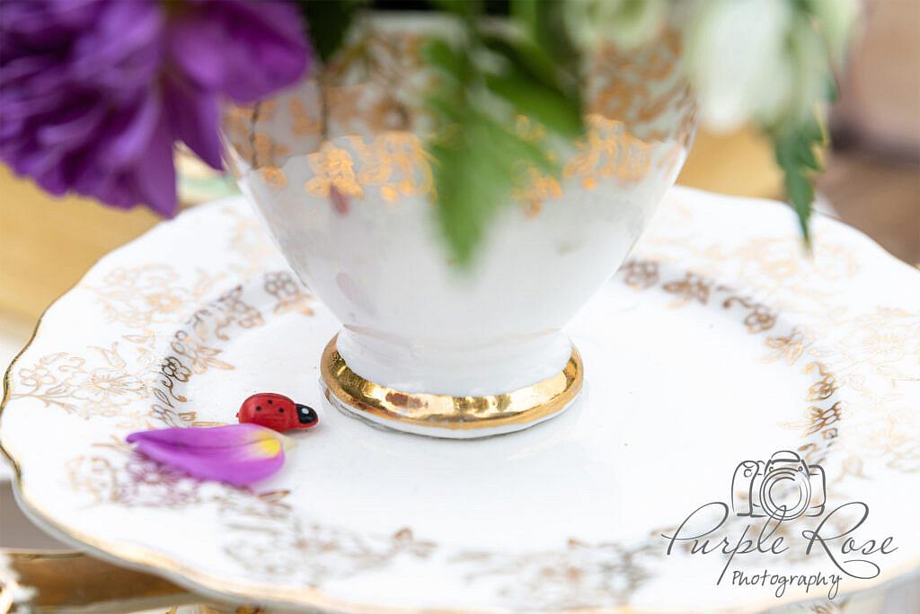 Ladybird with flowers